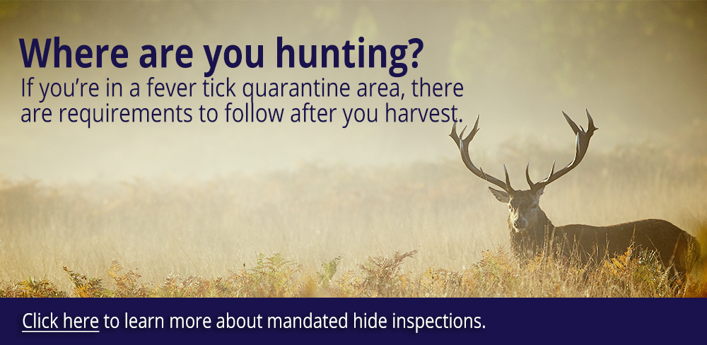 If you are hunting in a fever tick quarantine area, click here to learn               about the requirements for moving cervids off a quarantined premises.