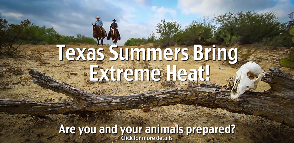 Texas Summers Brings Extreme Heat. Are you and your animals prepared? Click for more details